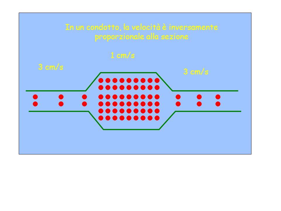 In un condotto, la velocità è inversamente proporzionale alla sezione