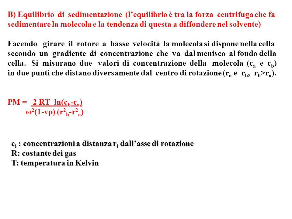 B) Equilibrio di sedimentazione (l'equilibrio è tra la forza centrifuga che fa sedimentare la molecola e la tendenza di questa a diffondere nel solvente)