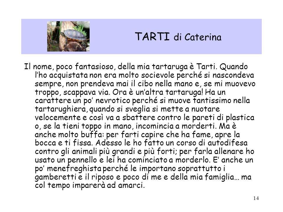 TARTI di Caterina