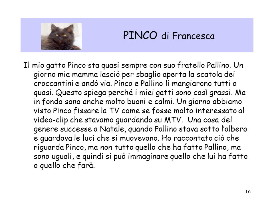 PINCO di Francesca