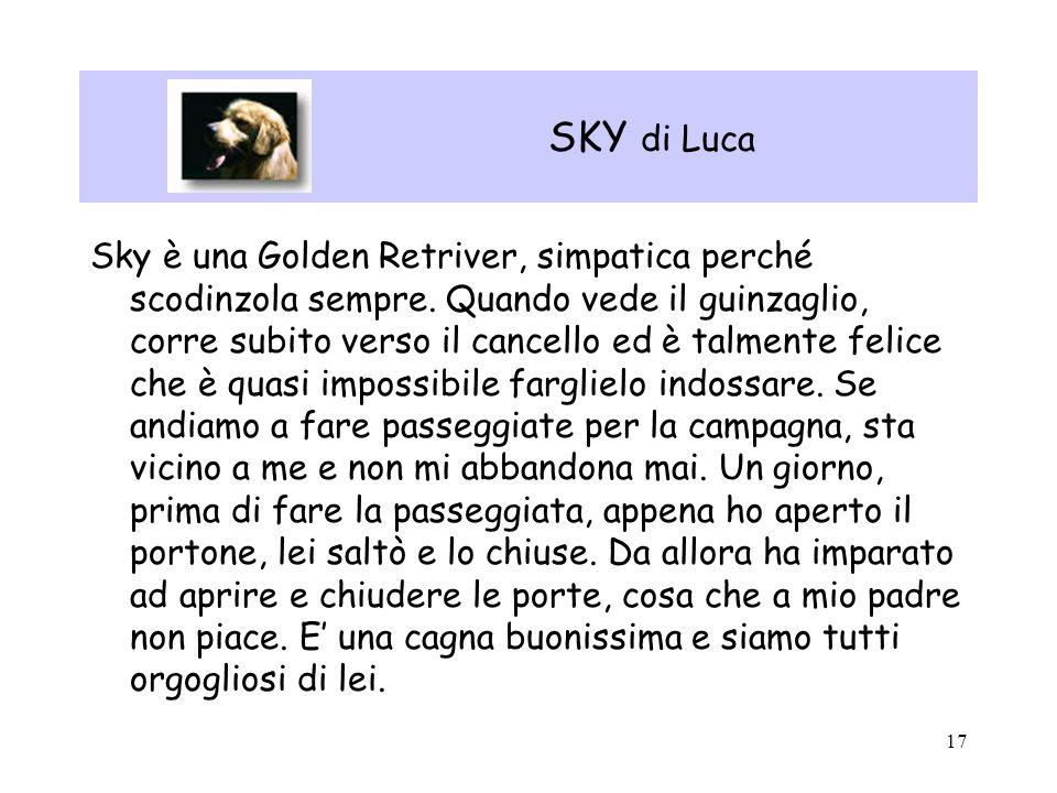 SKY di Luca