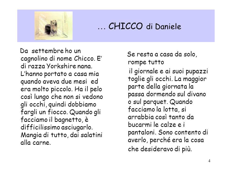 … CHICCO di Daniele Se resta a casa da solo, rompe tutto