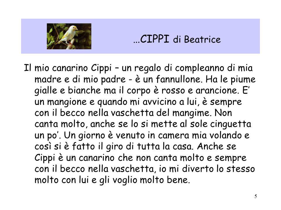 …CIPPI di Beatrice