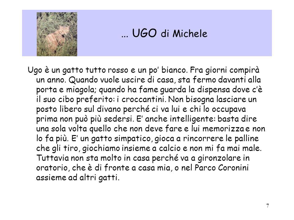 … UGO di Michele
