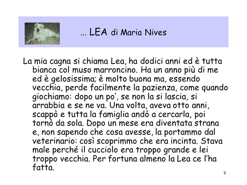 … LEA di Maria Nives
