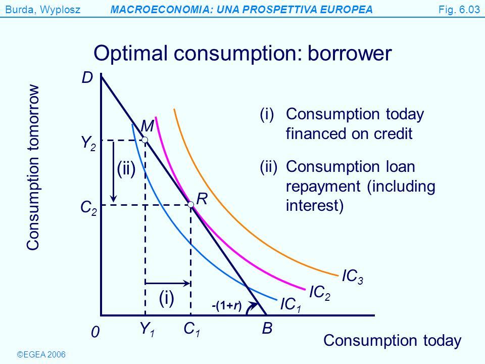Optimal consumption: borrower