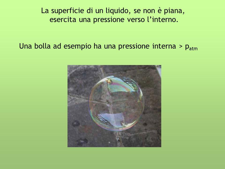 La superficie di un liquido, se non è piana,