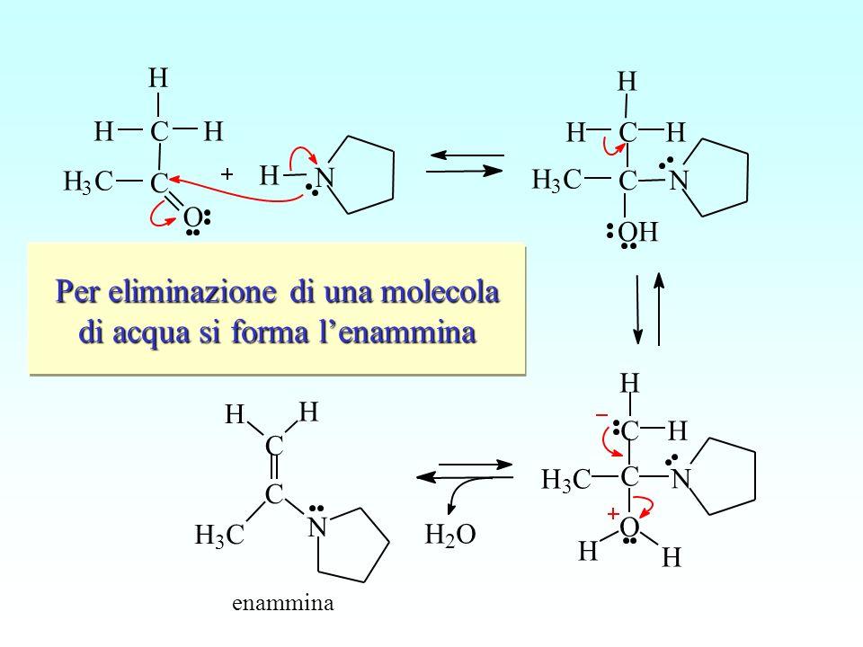 L'ammina secondaria compie un attacco nucleofilo sul carbonio