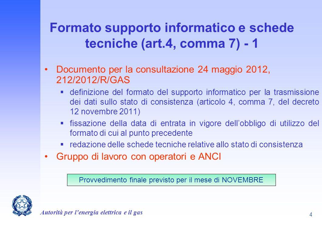 Formato supporto informatico e schede tecniche (art.4, comma 7) - 1