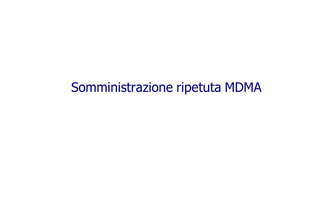 Somministrazione ripetuta MDMA