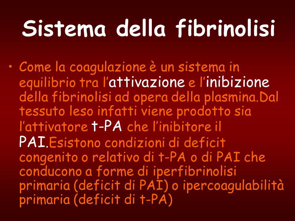Sistema della fibrinolisi