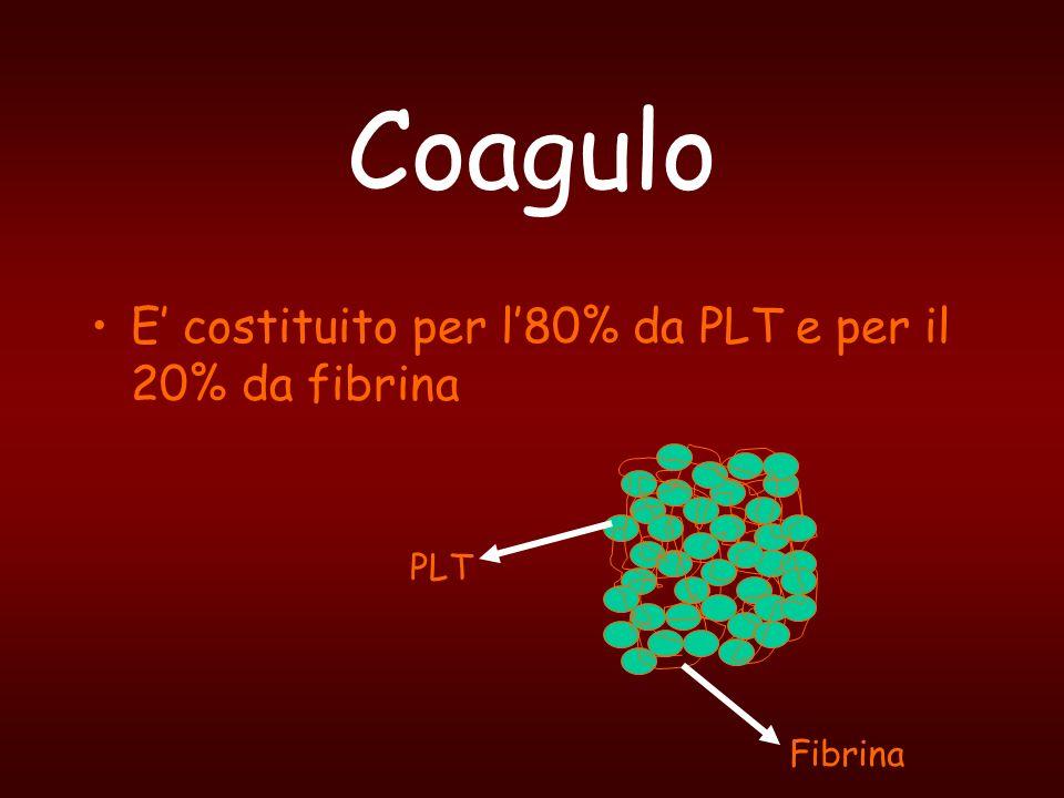 Coagulo E' costituito per l'80% da PLT e per il 20% da fibrina PLT