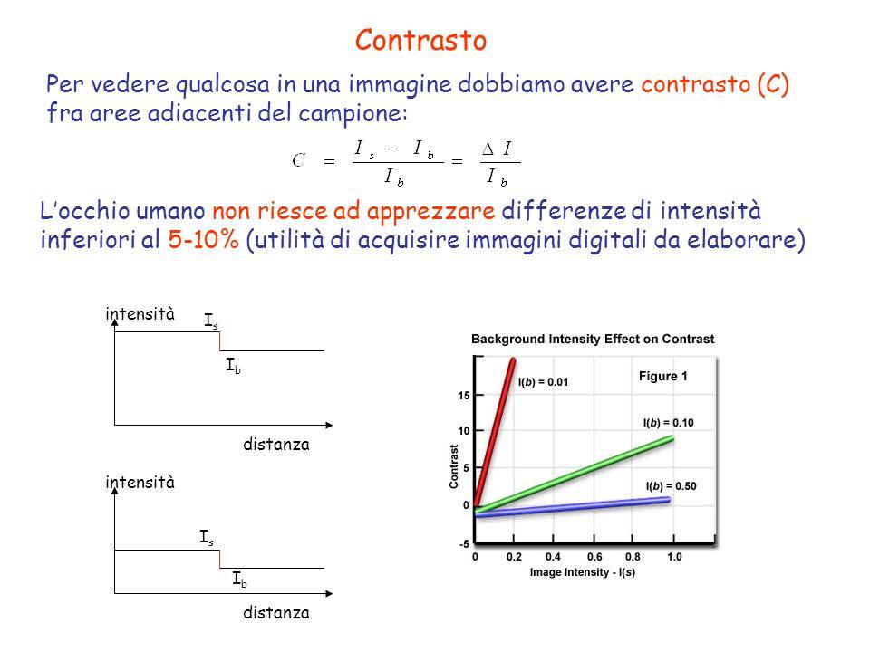 Contrasto Per vedere qualcosa in una immagine dobbiamo avere contrasto (C) fra aree adiacenti del campione: