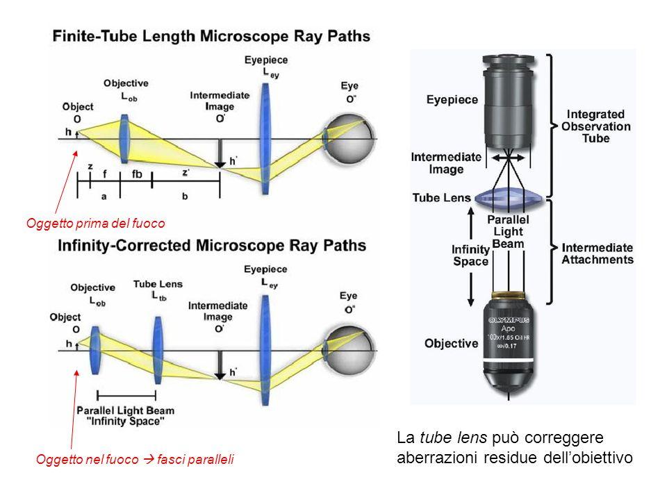 La tube lens può correggere aberrazioni residue dell'obiettivo