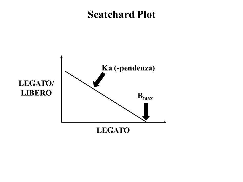 Scatchard Plot Ka (-pendenza) LEGATO/ LIBERO Bmax LEGATO