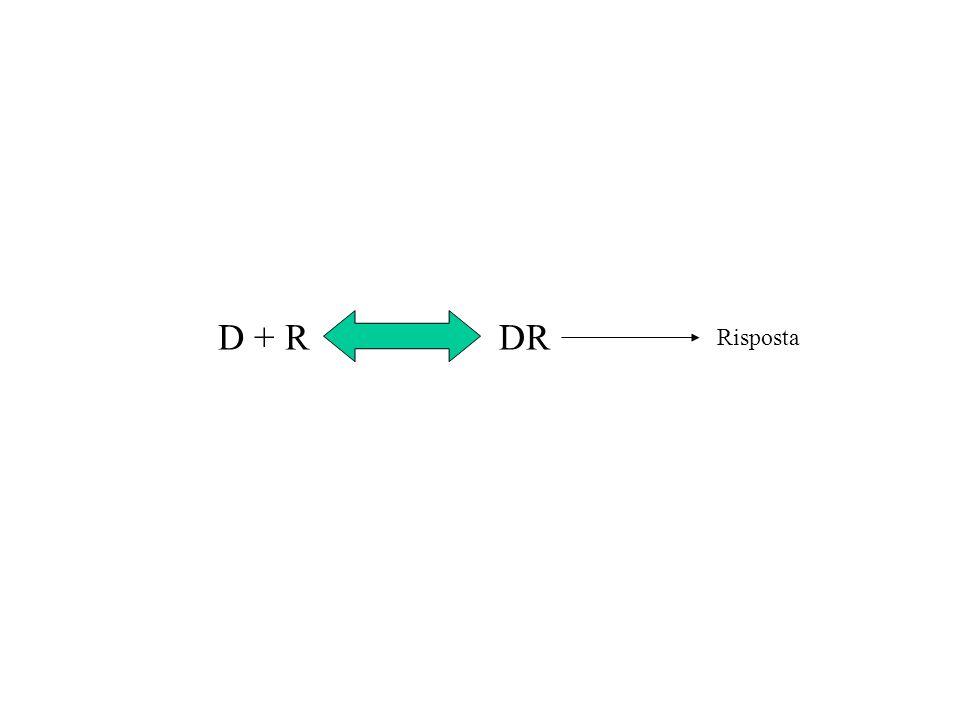 D + R DR Risposta