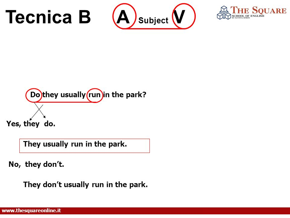 Tecnica B A Subject V Do they usually run in the park Yes, they do.