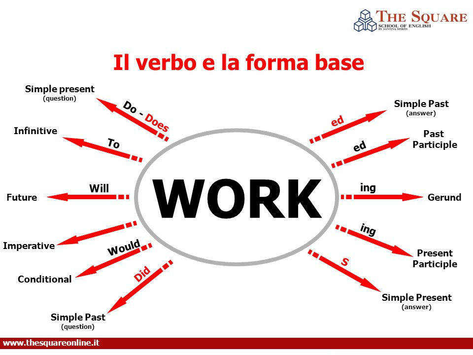 WORK Il verbo e la forma base Do - Does ed To ed Will ing ing Would S
