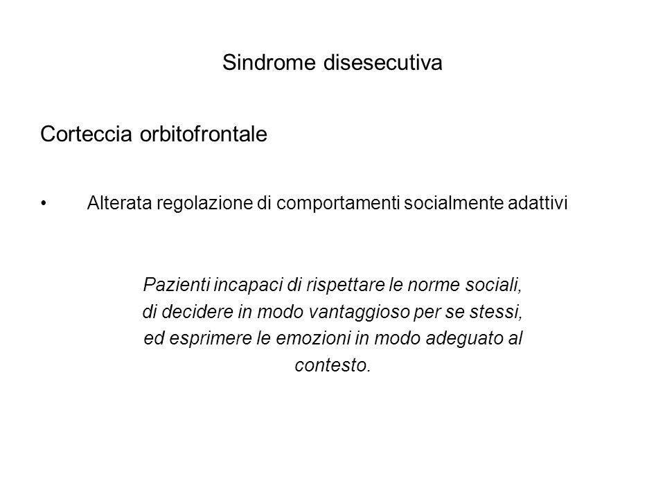 Sindrome disesecutiva