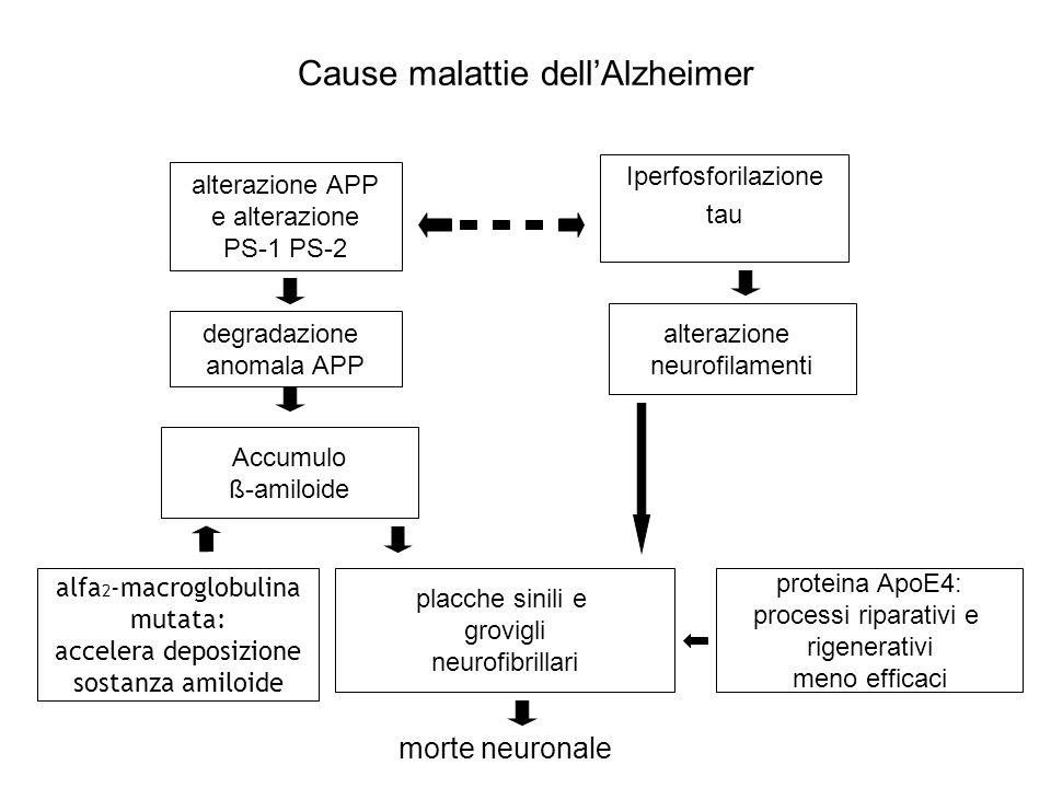 Cause malattie dell'Alzheimer