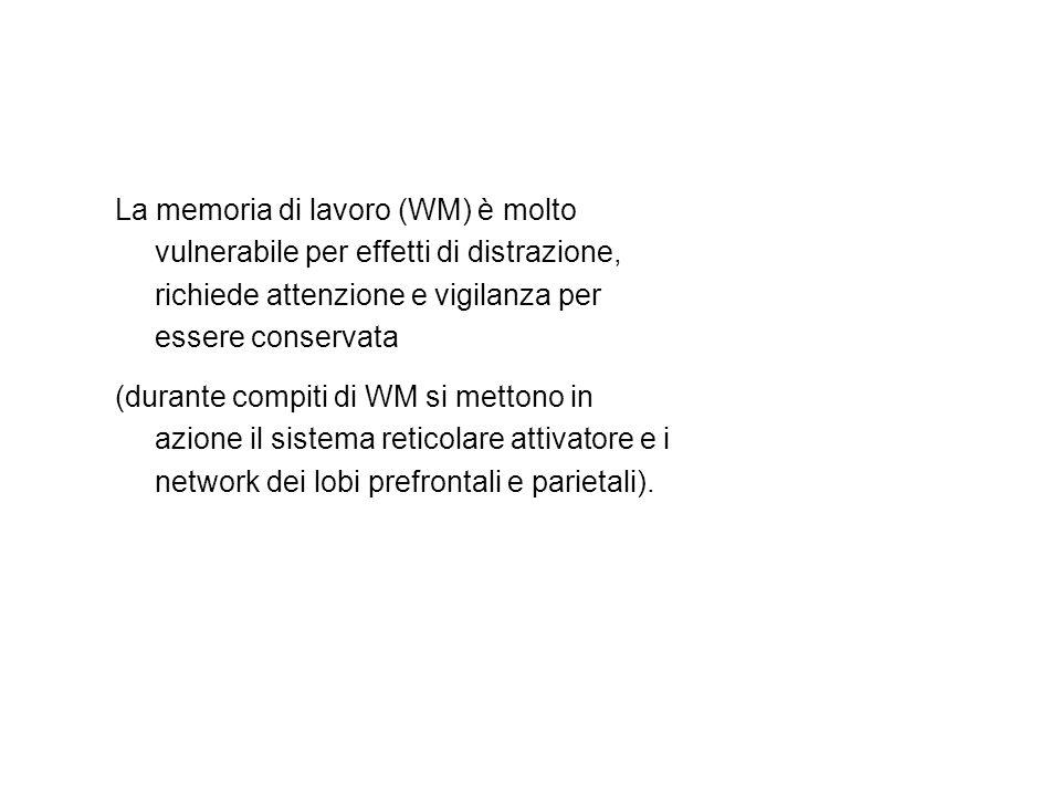La memoria di lavoro (WM) è molto