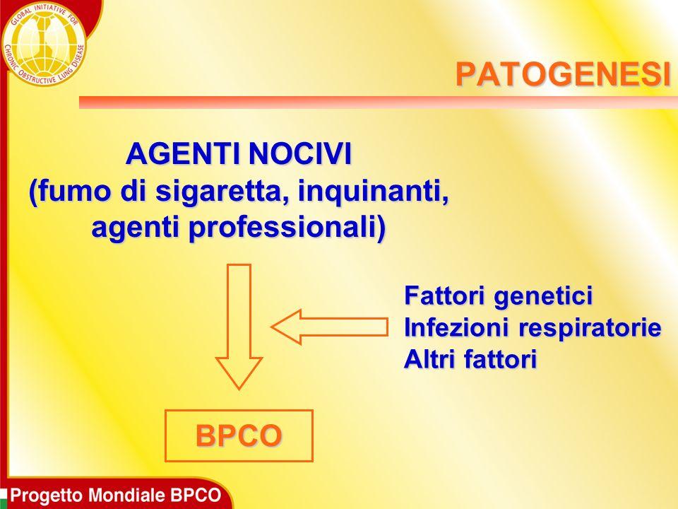 AGENTI NOCIVI (fumo di sigaretta, inquinanti, agenti professionali)