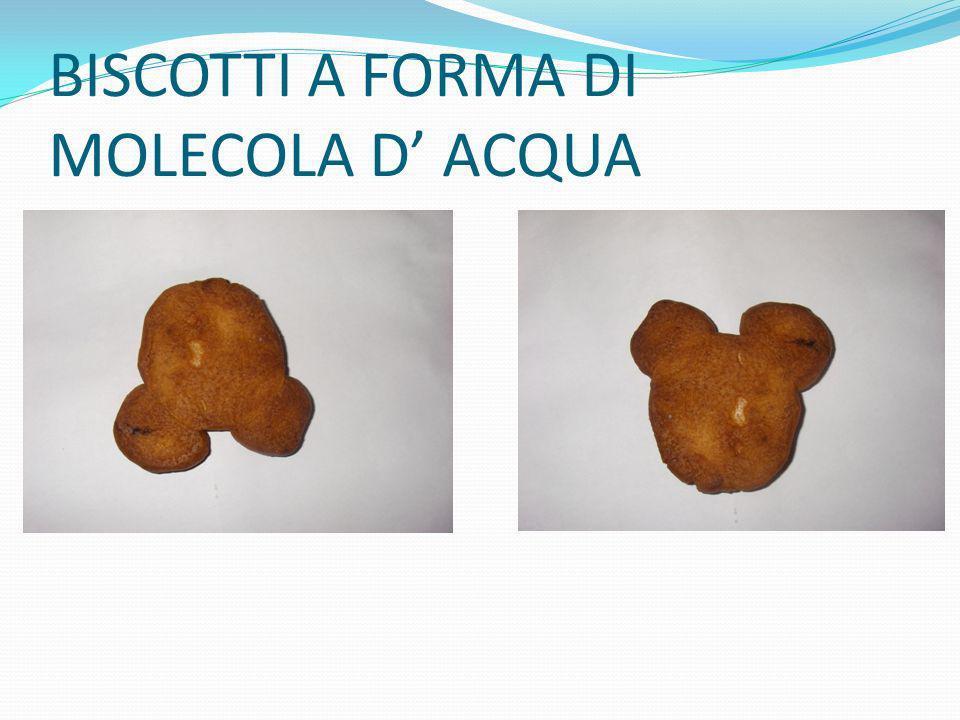 BISCOTTI A FORMA DI MOLECOLA D' ACQUA