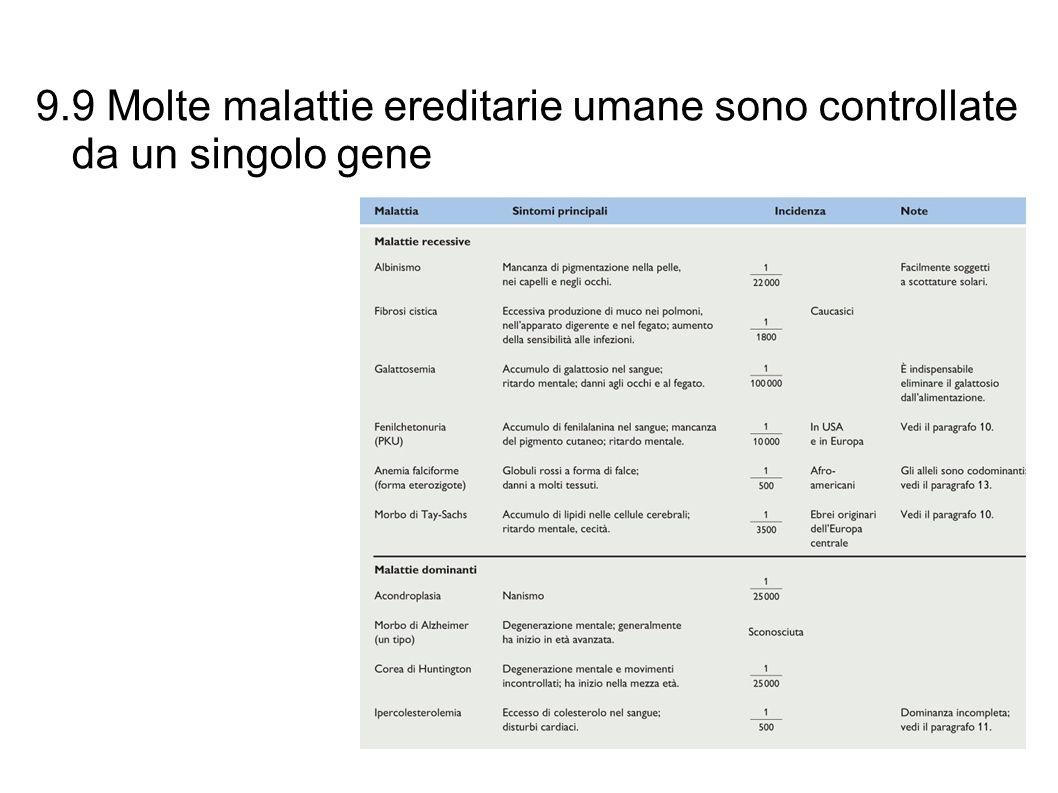 9.9 Molte malattie ereditarie umane sono controllate da un singolo gene