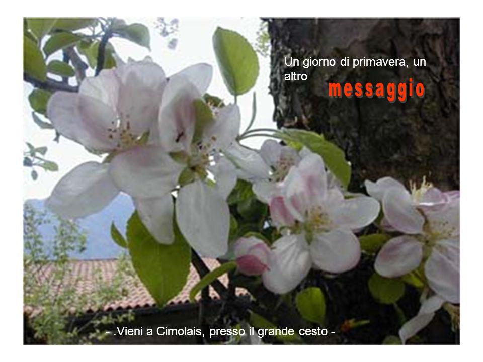 messaggio Un giorno di primavera, un altro