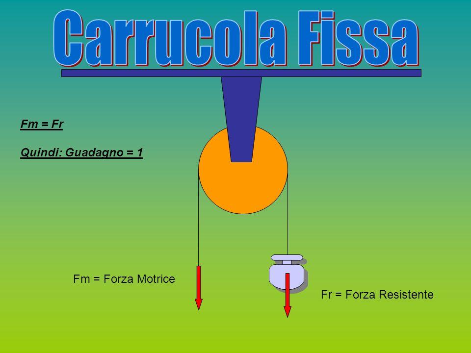 Carrucola Fissa Fm = Fr Quindi: Guadagno = 1 Fm = Forza Motrice
