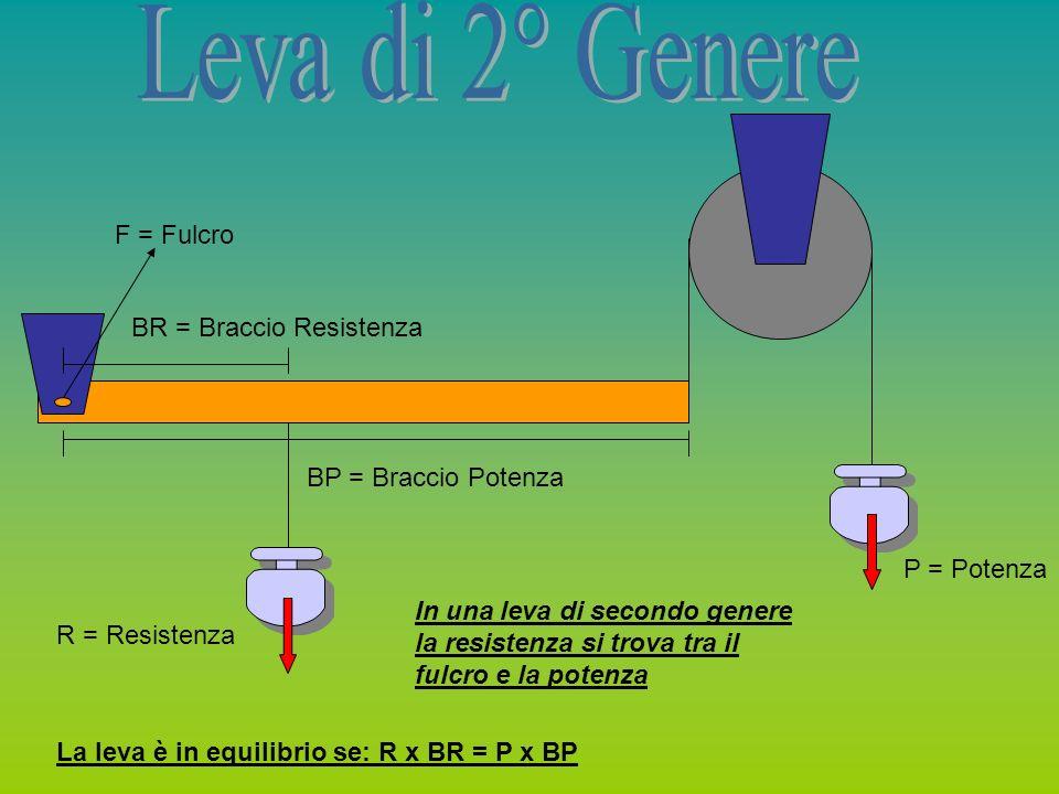 Leva di 2° Genere F = Fulcro BR = Braccio Resistenza