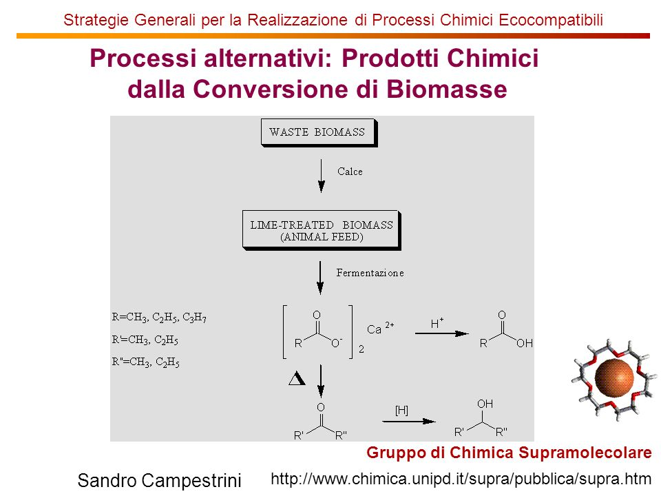 Processi alternativi: Prodotti Chimici dalla Conversione di Biomasse