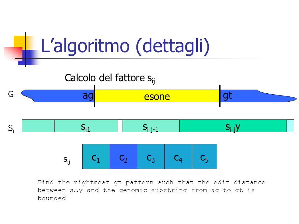 L'algoritmo (dettagli)