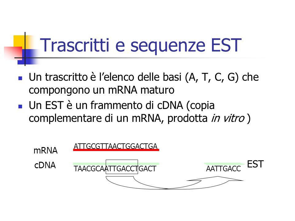 Trascritti e sequenze EST