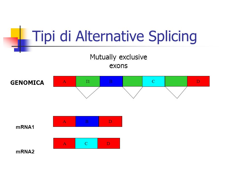 Tipi di Alternative Splicing