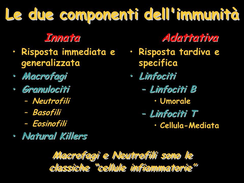 Le due componenti dell immunità