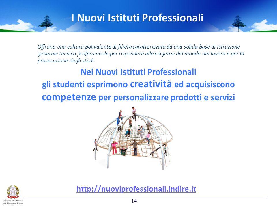 I Nuovi Istituti Professionali Nei Nuovi Istituti Professionali