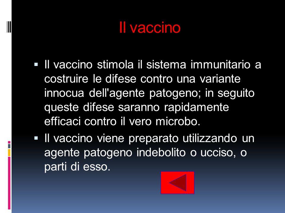 Il vaccino