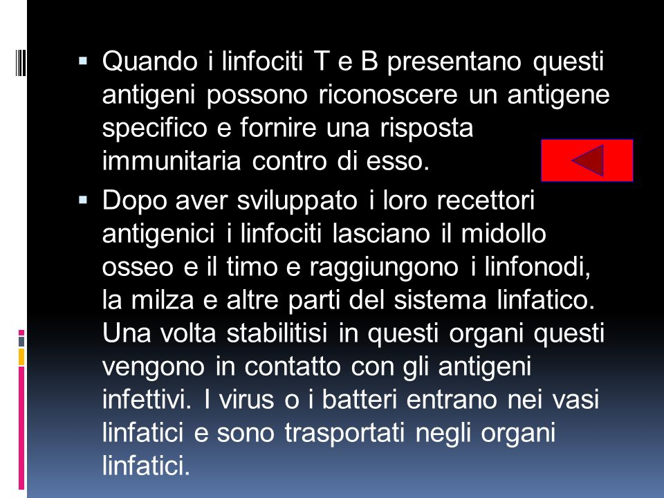Quando i linfociti T e B presentano questi antigeni possono riconoscere un antigene specifico e fornire una risposta immunitaria contro di esso.