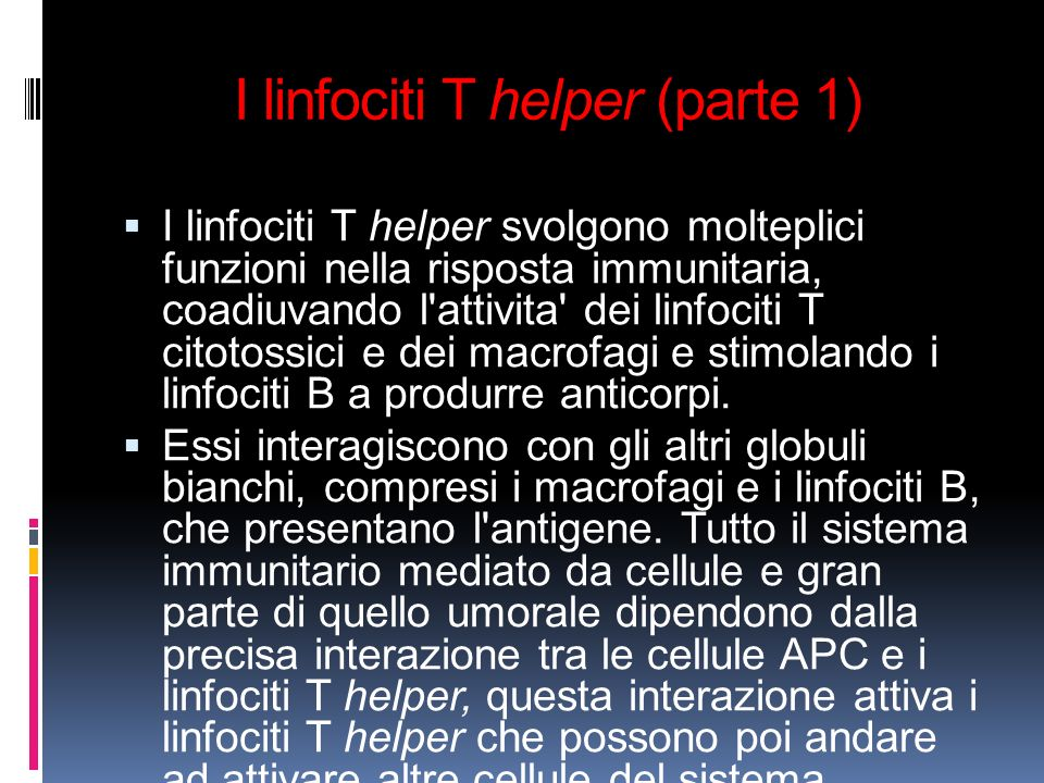 I linfociti T helper (parte 1)