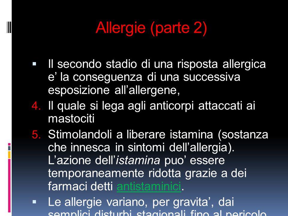 Allergie (parte 2) Il secondo stadio di una risposta allergica e' la conseguenza di una successiva esposizione all'allergene,