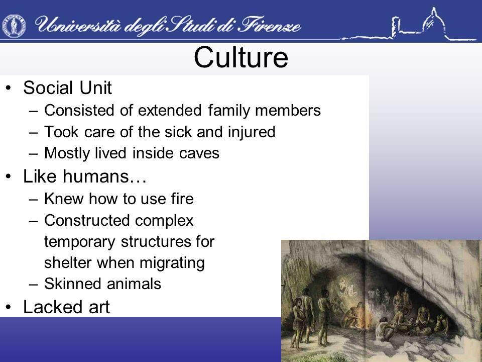 Culture Social Unit Like humans… Lacked art