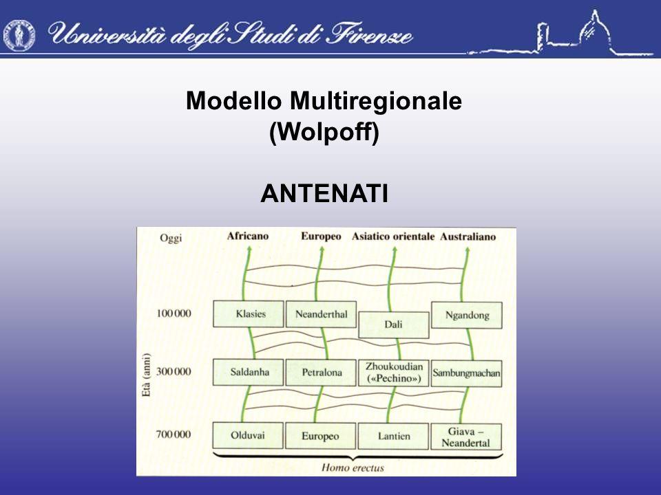 Modello Multiregionale