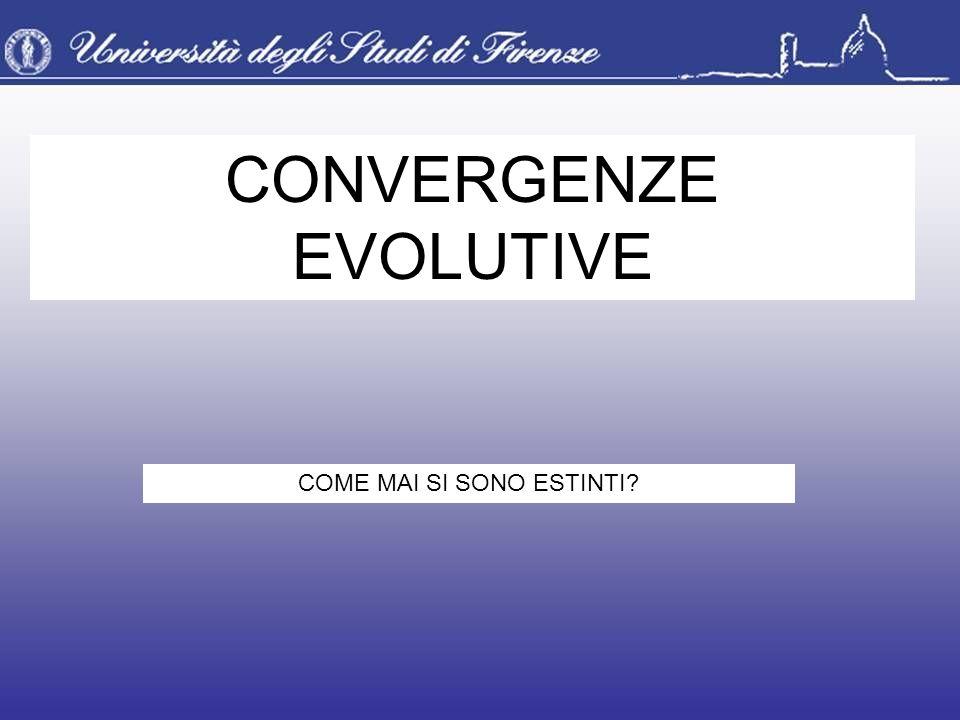 CONVERGENZE EVOLUTIVE