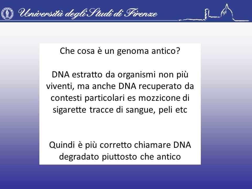 Che cosa è un genoma antico