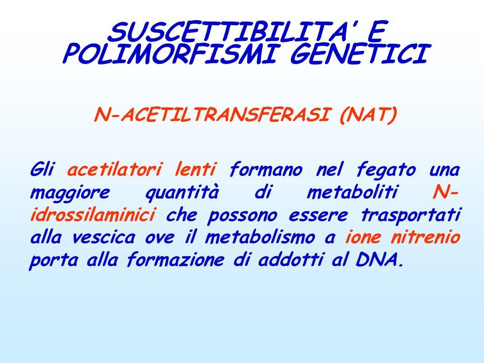 SUSCETTIBILITA' E POLIMORFISMI GENETICI