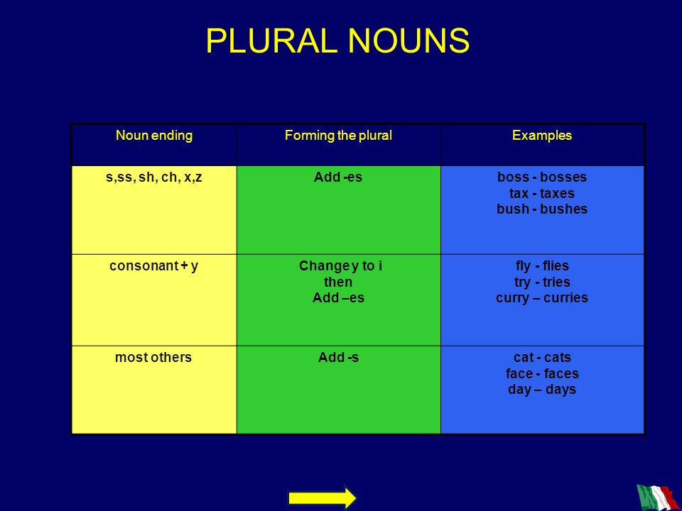 PLURAL NOUNS Noun ending Forming the plural Examples s,ss, sh, ch, x,z