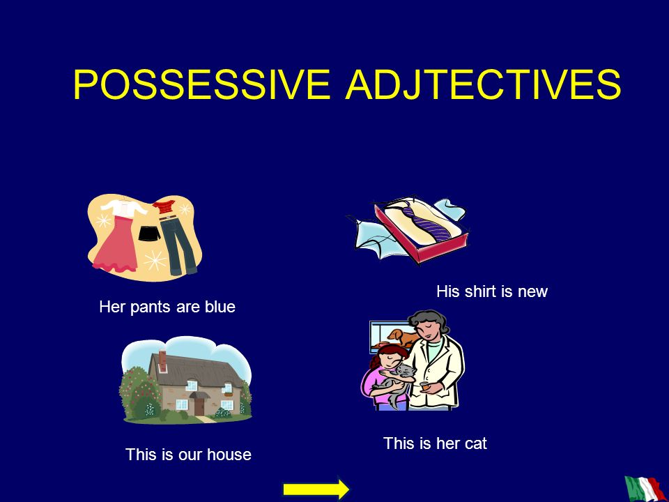 POSSESSIVE ADJTECTIVES