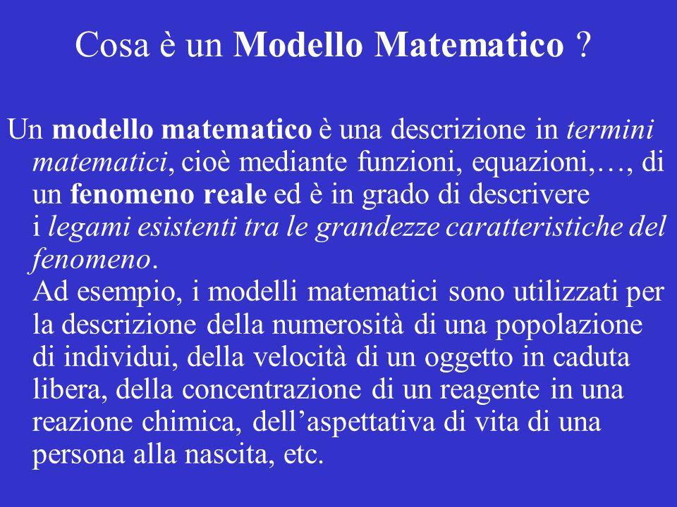 Cosa è un Modello Matematico
