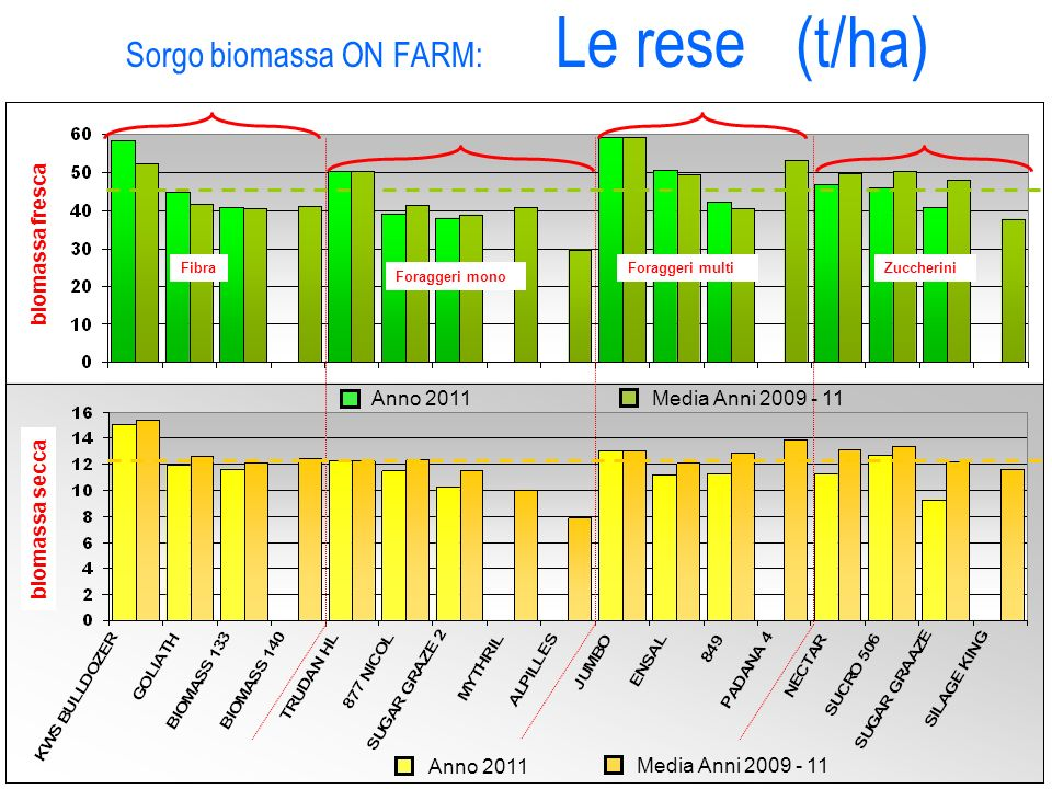 Sorgo biomassa ON FARM: Le rese (t/ha)